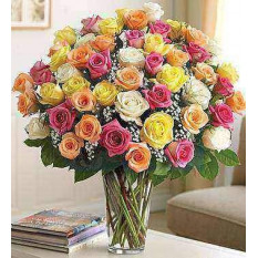Ultimate Elegance Long Stem Assorted Roses (24 Steam)