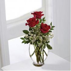 Romance De Roses (Standard)