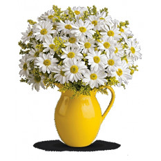 Sunny Day Pitcher of Daisies (Deluxe)