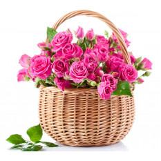 Beau panier de roses roses