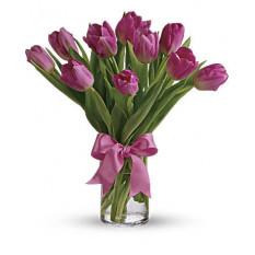 Tulipes roses précieuses (standard)