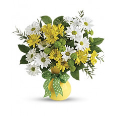 Daisies And Dots Bouquet (Standrad)