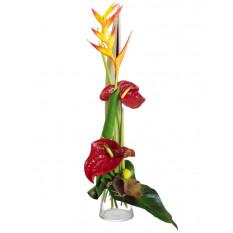 Bouquet et hauteur-2