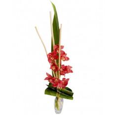 Bouquet et hauteur-4