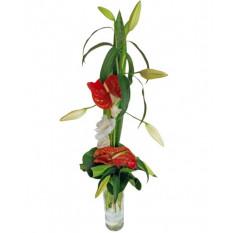 Bouquet et hauteur-5