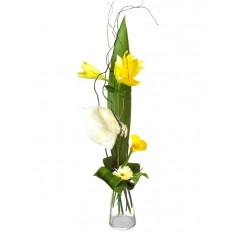 Bouquet et hauteur-6