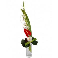 Bouquet et hauteur-7
