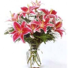 Lilies Dans Un Vase