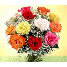 Roses multicolores dans un vase