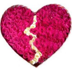 Roses en forme de coeur brisé avec 101 roses