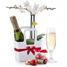 Cadeaux Meilleurs Vœux