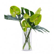 Bouquet vert tropical en vase de plexi
