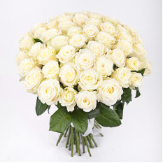 51 roses blanches