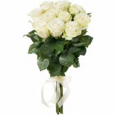 11 roses blanches (Hollande)
