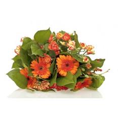 Bouquet de fleurs d'oranger