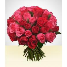Paire parfaite: 36 roses Bouquet rose et rouge