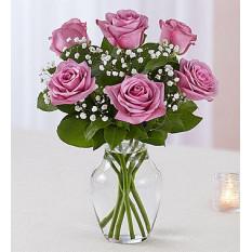 Love's Embrace Roses - Violet