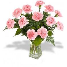 12 Vase d'agneau rose