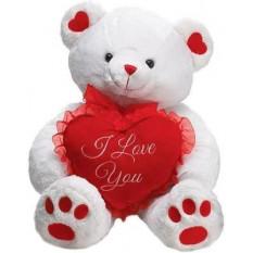Teddy blanc avec un coeur
