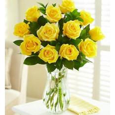 12 Roses Roses Roses