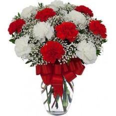 Vase d'œillets rouge et blanc