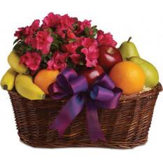 Fruits et fleurs (petit)