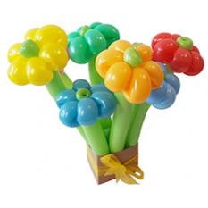 Belle boîte à fleurs ballon