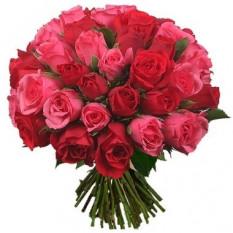 Trois douzaines de roses rouges et roses