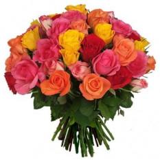 Trois douzaines de mélanges de roses en couleurs