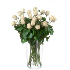 MyBouquet Roses Blanches (20 Roses)