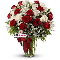 25 amour divin des roses rouges et blanches