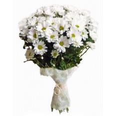 Bouquet de 7 chrysanthèmes blancs
