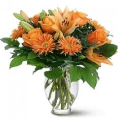 Lilium orange (petit)