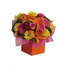 Starburst Splash - Arrangement floral