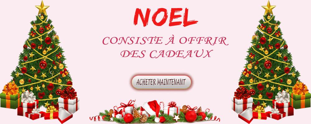 Livraison de cadeaux de Noël en France